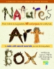 Nature's Art Box: From T-Shirts to Twig Baskets - 65 Cool Projects for Crafty Kids