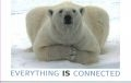 Polar Bear - Everything IS Connected Poster